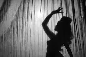 lingerie silhouette